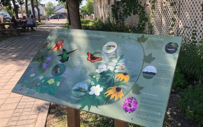 So, How Do You Make Interpretive Signs Anyway?